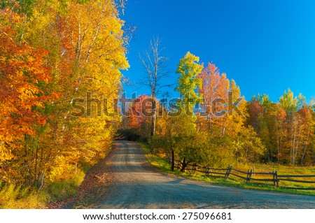 Gravel road on a sunny fall foliage morning, Stowe, Vermont, USA. - stock photo