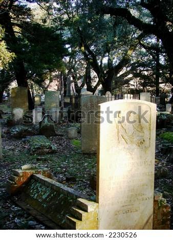 graves - stock photo