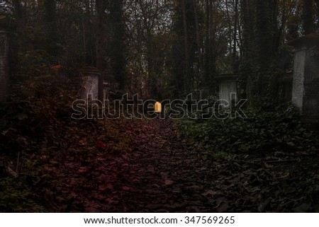 Graveyard in the forest  with fog. - stock photo