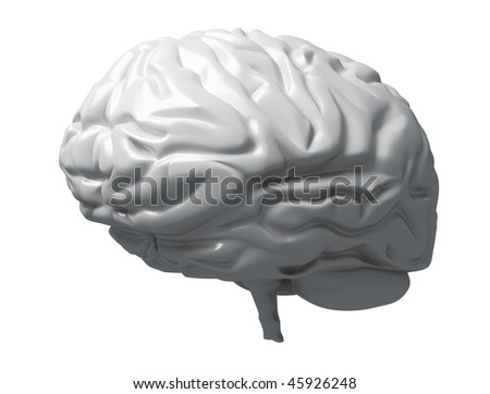 Gray Brain Matter - stock photo