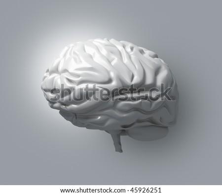 Gray Brain Matter - stock photo