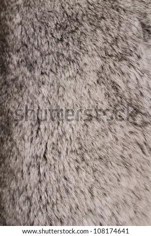 Gray fur background - stock photo