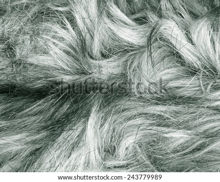 Gray fur texture fragment as a background - stock photo