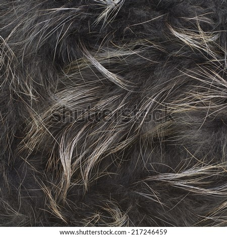 Gray fur texture fragment as a background composition - stock photo