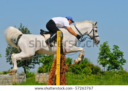 Gray horse and rider over a jump - stock photo