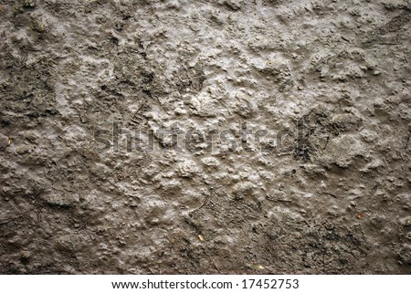 Gray mud, background and texture