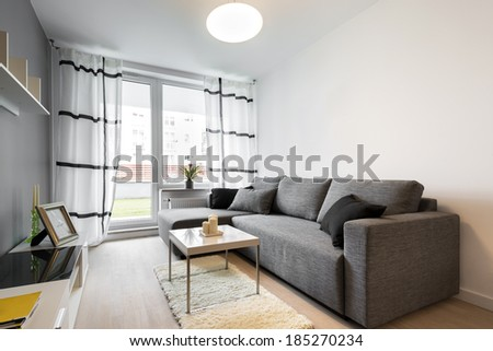 Gray Sofa In Modern Living Room Apartment