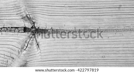Gray tone wood texture. abstract background. Wooden texture with pattern: Dirty old wooden surfaces, the table, pattern wood : White hardwood surface - stock photo