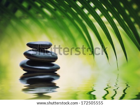 Grean bamboo leaves over zen stones pyramid reflecting in water surface  - stock photo