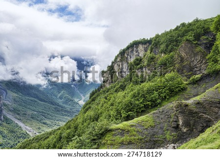 Great alpine canyon with green forest trees on edge - stock photo