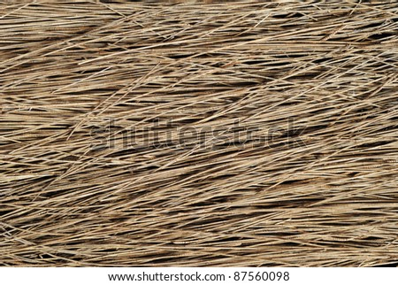 Great background texture of red fir needles - stock photo