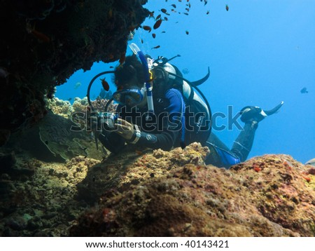 GREAT BARRIER REEF, AUSTRALIA - OCT 28:  Scuba diver takes a macro photos of life on the reef October 28, 2009 in Great Barrier Reef, Australia. - stock photo