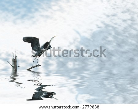 Great blue heron beautifully reflected on water rising from a sunken tree stump
