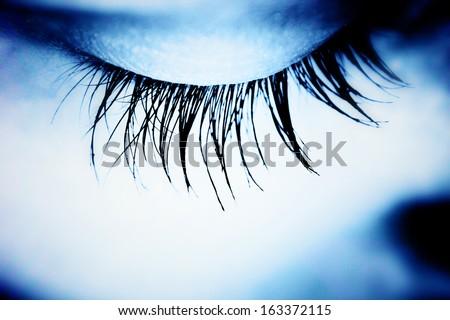 Great eye - MACRO - stock photo