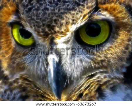 Great Horned Owl A fractal filtered image of a Great Horned Owl. Horizontal. - stock photo