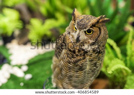 Great horned owl (Bubo virginianus) at the garden - stock photo