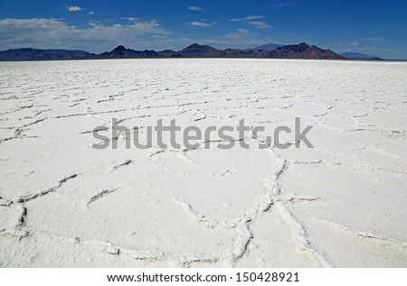 Great Salt Lake Desert from frog's perspective. Utah
