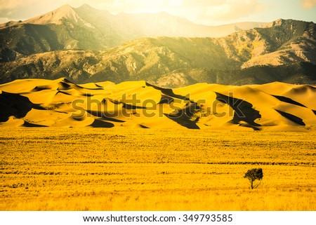 Great Sand Dunes Yellow Sunset Light Colorado National Park USA - stock photo