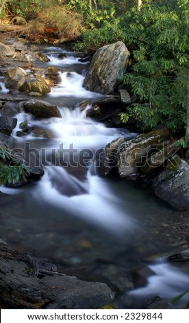 Great Smoky Mountains National Park - Alum Cave Bluffs Trail - stock photo