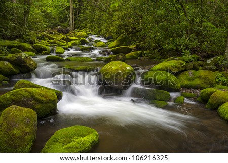 Great Smoky Mountains National Park Gatlinburg TN Roaring Fork River lush green forest landscape photography - stock photo