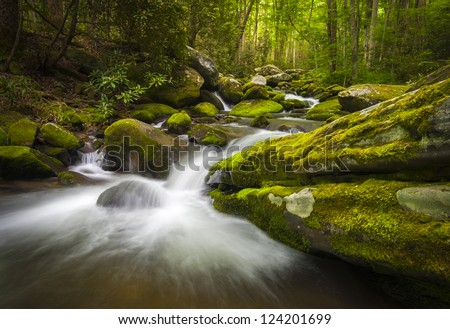 Great Smoky Mountains National Park Gatlinburg TN Roaring Fork River waterfalls and forest nature - stock photo