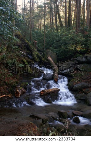 Great Smoky Mountains National Park - Grotto Falls Trail - stock photo