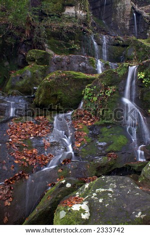 Great Smoky Mountains National Park - Place of a thousand drips - stock photo