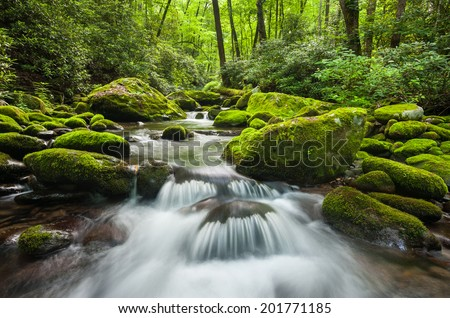 Great Smoky Mountains National Park Roaring Fork Green Moss River Cascade just outside of Gatlinburg Tennessee - stock photo