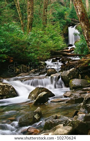 Great Smoky Mountains National Park Waterfall located on Trillium Gap Trail in Spring Vertical - stock photo