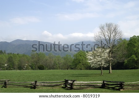 Great Smoky Mountains Springtime Landscape Horizontal - stock photo