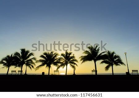 great sunrise and silhouette coconut tree