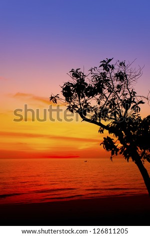 great sunset and tree silhouette - stock photo