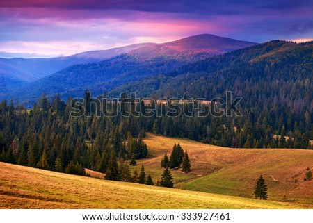 Great view of Carpathian mountains with amazing sky at sunset time. Pine trees in valley - stock photo