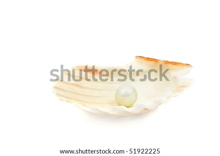 Great white pearl in she shell over white background - stock photo