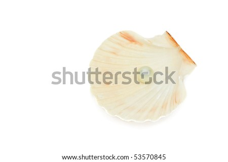Great white pearl in shell isolated on white background - stock photo