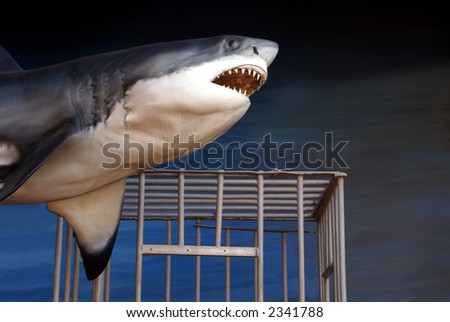 Great white shark and diver's cage - stock photo