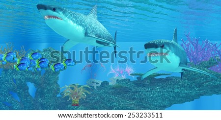 Great White Shark Shoal - A school of Black-backed Butterflyfish swim away from two Great White Sharks swimming over a reef. - stock photo