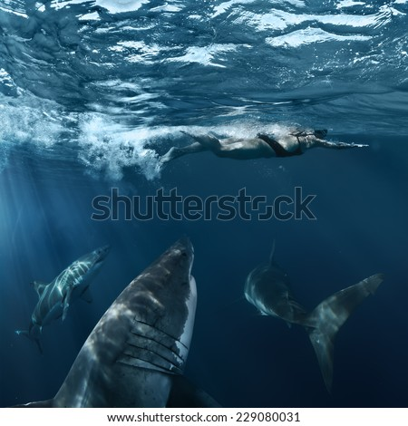 Great White Sharks hunting brave female swimmer from deep - stock photo