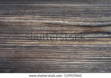 Great wood texture - stock photo
