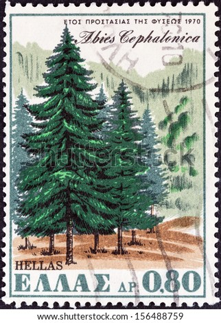 """GREECE - CIRCA 1970: A stamp printed in Greece from the """"Nature Conservation Year"""" issue shows Greek Fir (Abies cephalonica), circa 1970.  - stock photo"""