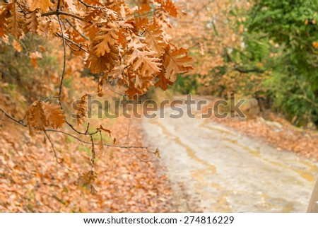 Greece Doksa lake, Beautiful Colorful Autumn scenery - stock photo