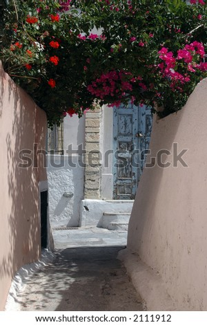 greece greek islands santorini alley with flowers and old door bougainvillea - stock photo