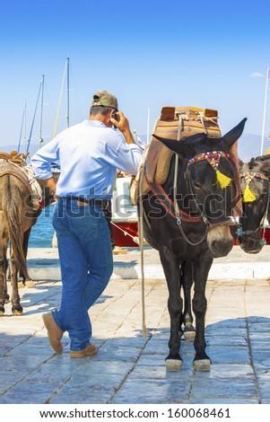 Greece Santorini island, donkey posing by the sea at main harbor with man driver - stock photo