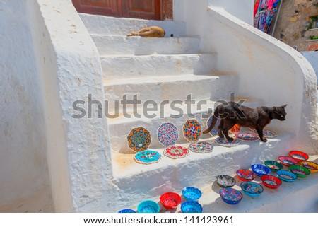 Greece Santorini island in Cyclades,  cat walking threw gifts on steps - stock photo
