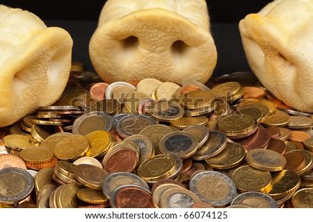 Greedy Pigs Concept - stock photo