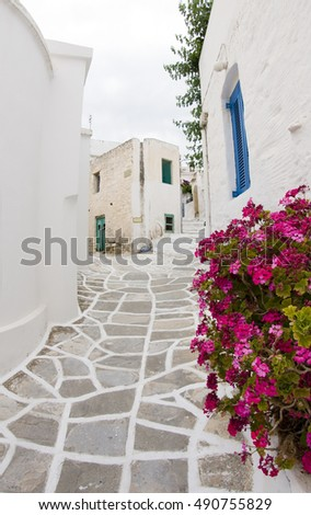 Greek Island Paros, historic village Lefkes typical street scene with painted stone street and white classic buidlings with flowers in pots