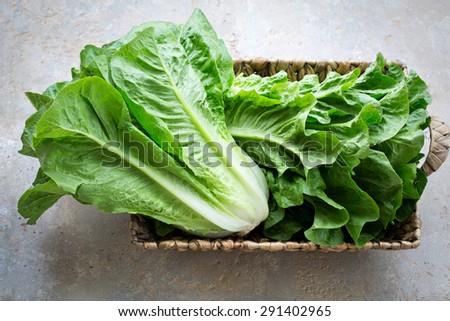 Greek lettuce salad Marula - stock photo
