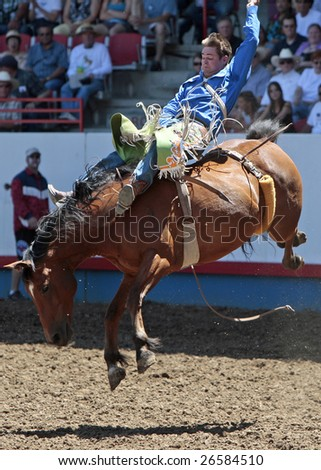 GREELEY, COLORADO - JULY 4: PRCA Bareback cowboy Royce Ford competes in the championship round of the Greeley Stampede, the world's largest 4th of July rodeo, on July 4, 2008 in Greeley, Colorado. - stock photo