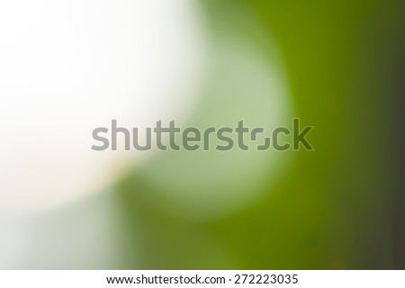green abstract defocused background - stock photo