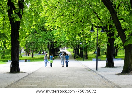 Green alley - stock photo